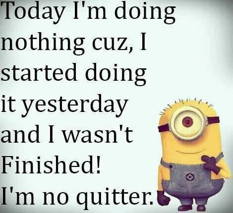 not a quitter minions