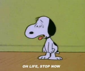 snoopy and life humor