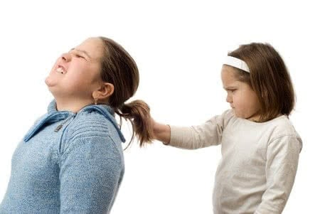 4243605 - a mean little girl pulling on her older sister's hair, isolated against a white background